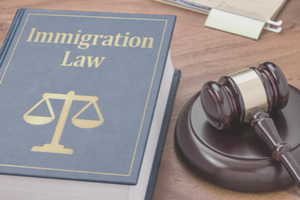 image of immigration law