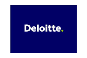 Case Study: Deloitte and Touche, L.L.P.