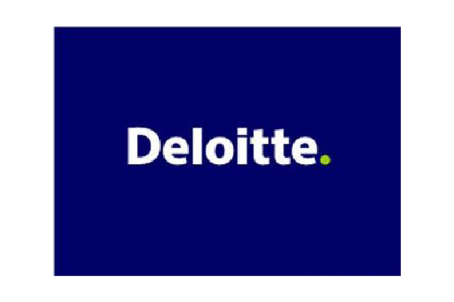 deloitte case study solutions Deloitte's finance team was experiencing issues with email overload and version control there was a lack of formal workflow that made it difficult for finance.