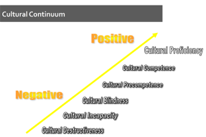 Cultural Competence in Diverse Teams