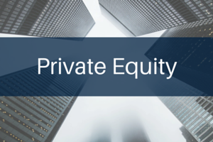 image of private equity logo